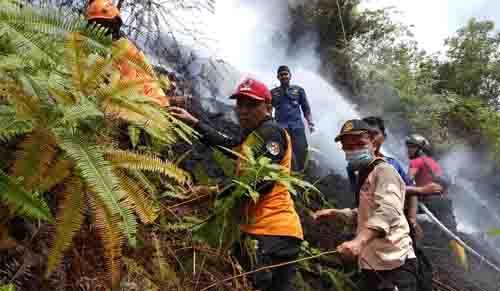 Hutan Lindung Puncak Pela Harau Bukik Wisata Terbakar